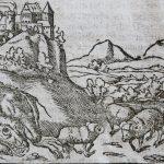 Dragon de Cracovie